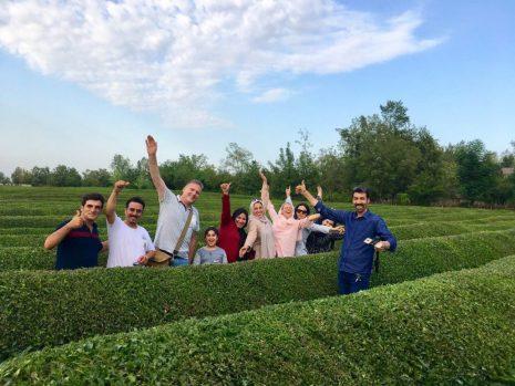 Iran Tea Tasting Tour-irantouristcenter.ir 4