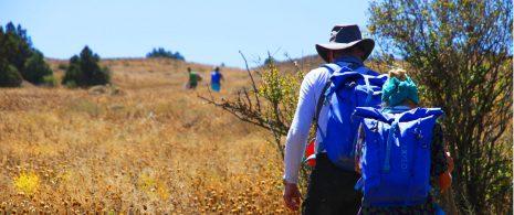 Trekking at Golestan Park-irantourismcenter.ir 4